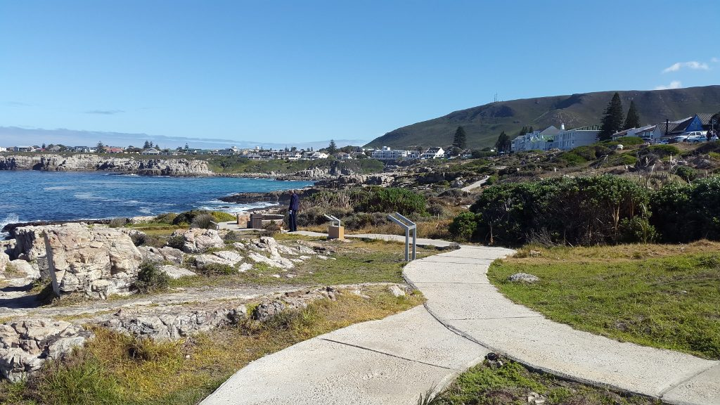 The Cliff Paths in Hermanus