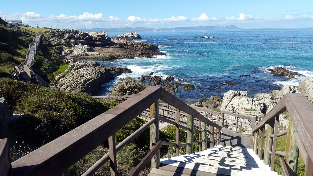 Hermanus Cliff Path Walk