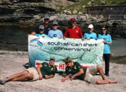 South African Shark Conservancy