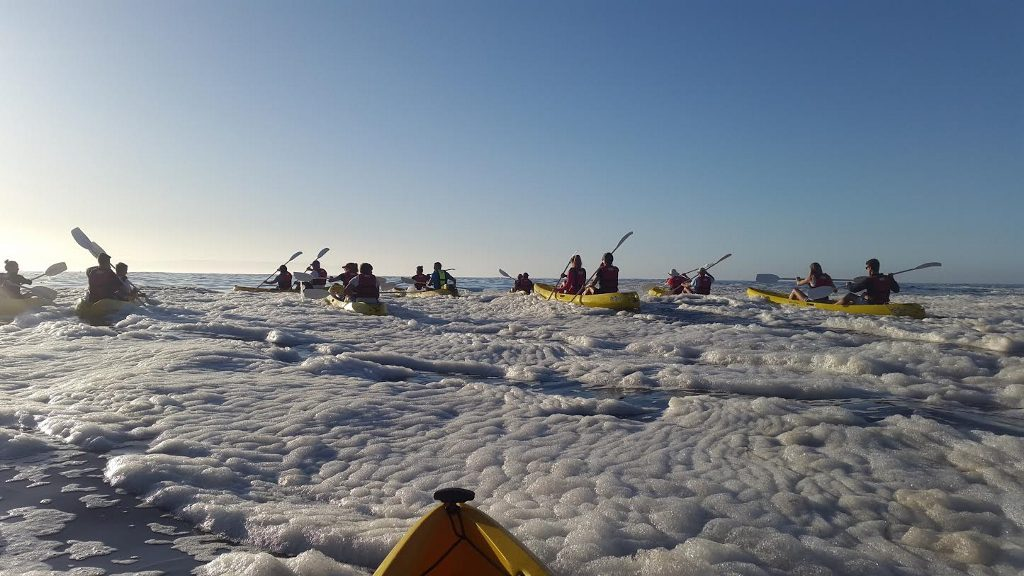 Sunrise Sea Kayaking